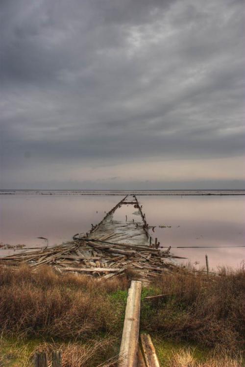 Syvash lake