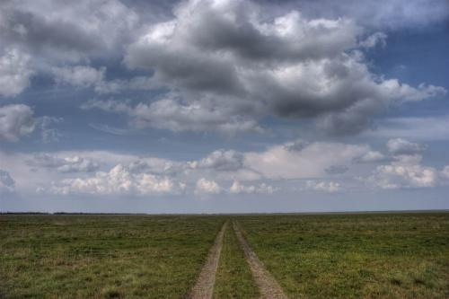 Reserved steppe