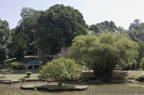 Пруд в виде Шри-Ланки, остров в центре - Канди
