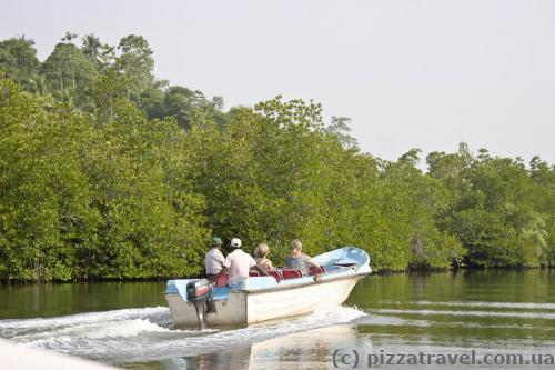 Прогулки по реке проходят на таких лодках.