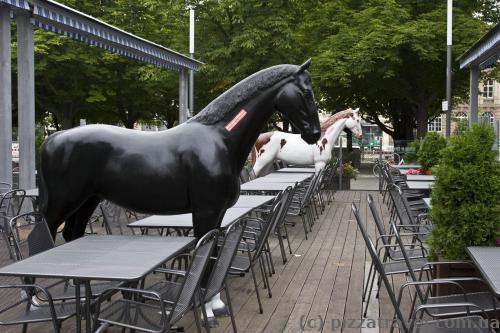 Сидиш собі в ресторані і тут підходить кінь.