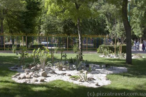 Дендропарк у Кіровограді