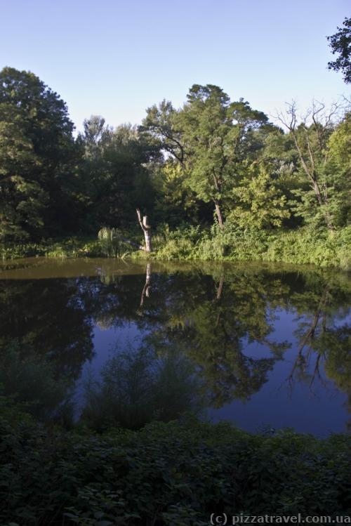 Парк с прудом около дворца Фредро