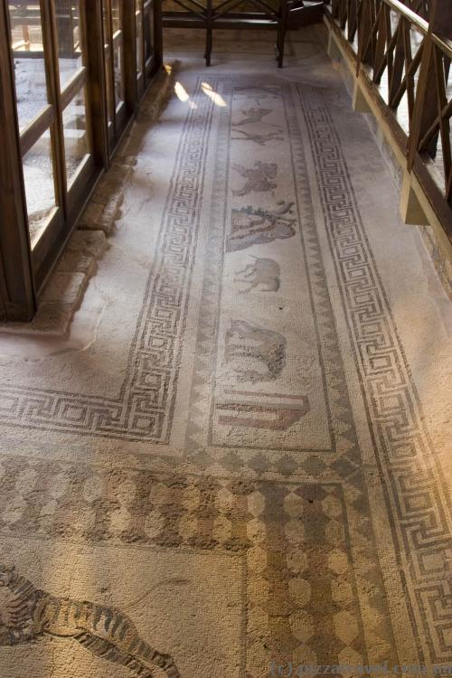 Ancient mosaics in the archaeological park of Paphos