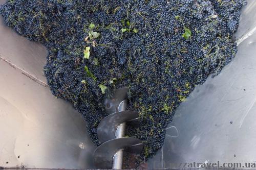 Kindzmarauli winery