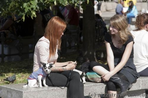 У Мілані всі носять чоботи, навіть у найспекотнішу погоду.