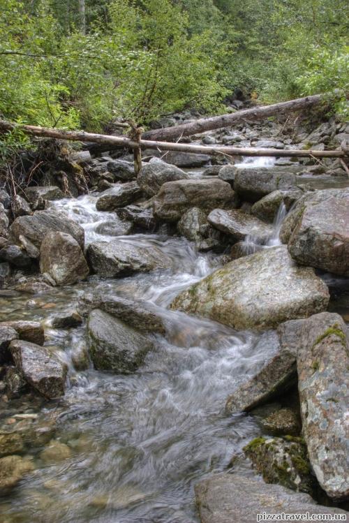 Невеликий водний потік у лісі