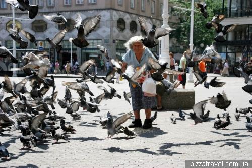 Funny Grandma in Zagreb