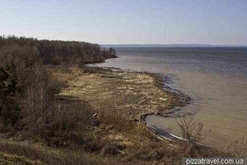 Swampy coast