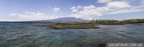 Острів Фернандіна