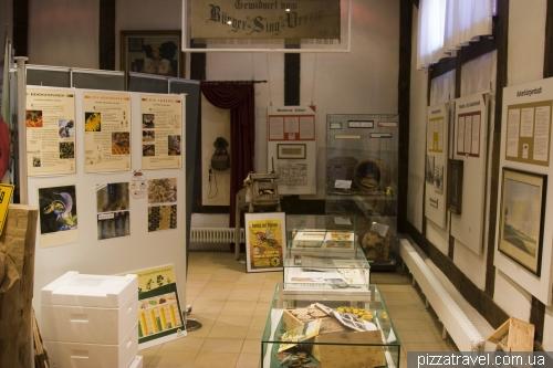 Музей для бджолярів у Штадтхагене