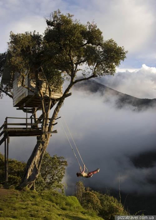 Tree house (Casa Del Arbol)