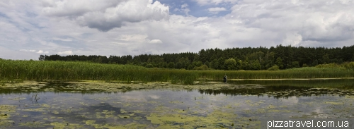 National Park «Piryatinsky»