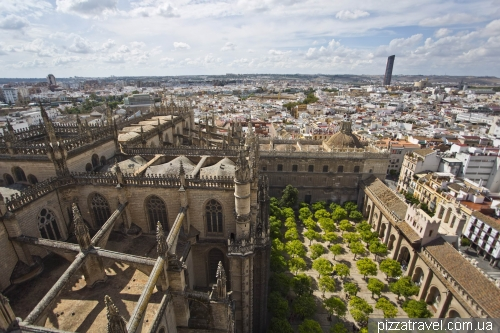 View of the Seville Cathedral and orange garden
