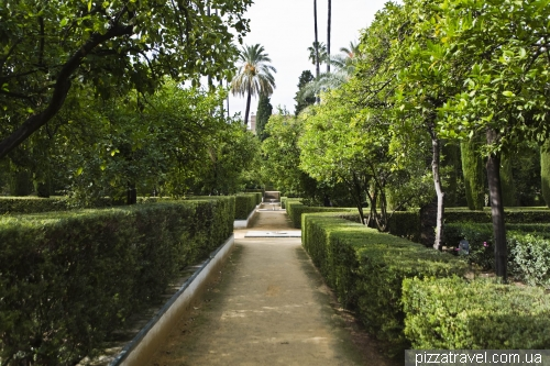 Gardens in the Alcazar of Seville