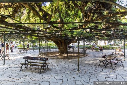 Лиссабон, Jardim do Príncipe Real