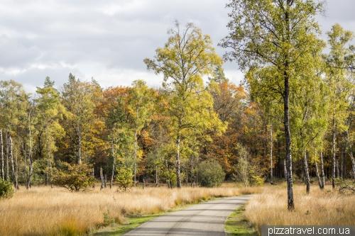 Национальный парк Де-Хоге-Велюве (De Hoge Veluwe)