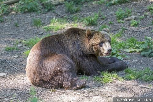 Worbis bear park