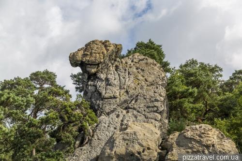 Dohren cliffs (Doerenther Klippen)