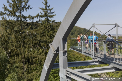 Trail over the treetops in Bad Harzburg (Baumwipfelpfad)