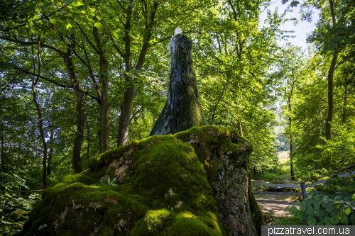 Водное дерево (Wasserbaum)