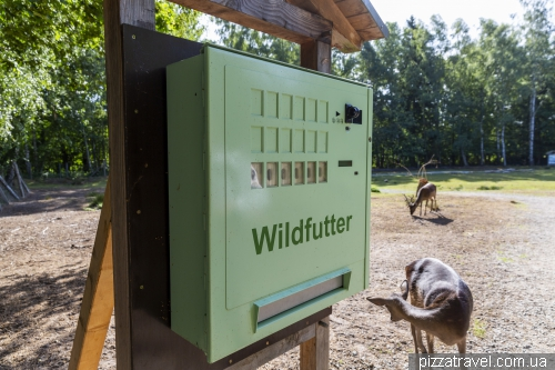 Парк дикої природи в Мюдені (Wildpark Mueden)