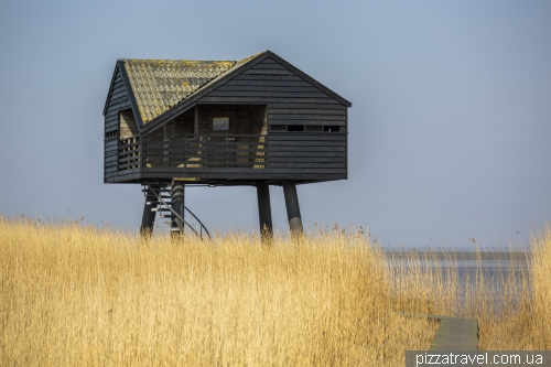 Kiekkaaste Birdwatcher's house