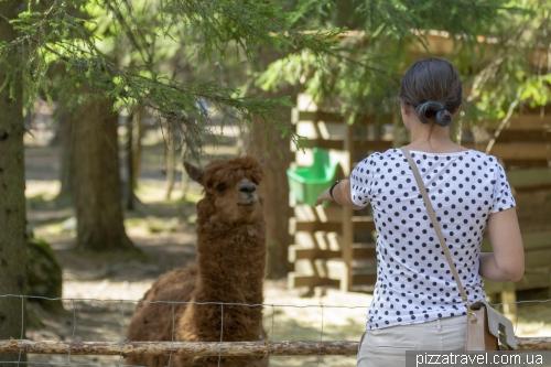 Контактний зоопарк Корпікейдас (Korpikeidas)