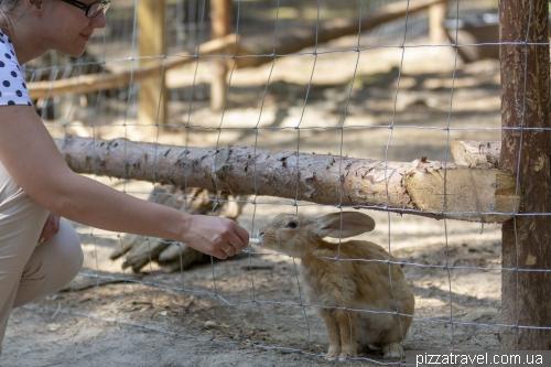 Korpikeidas Contact Zoo