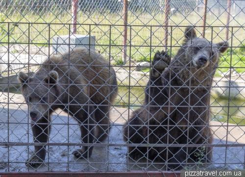 Приют для хищников около Куусамо (Kuusamon Suurpetokeskus Oy)