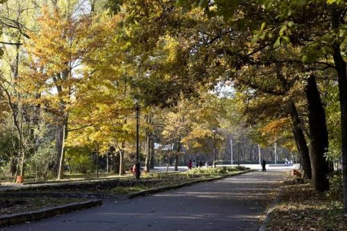 Парк ім. Леніна
