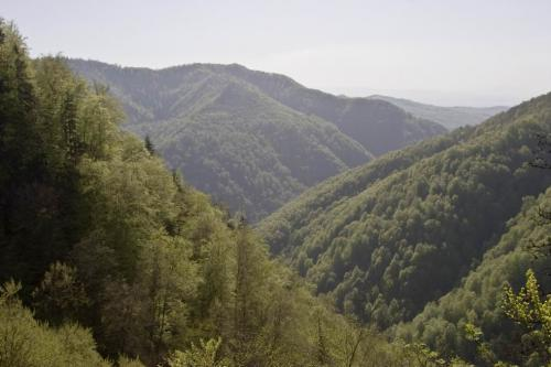 View of the Romanian mountains from Sokolyne Berdo
