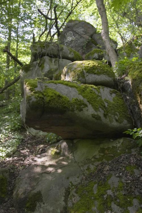 Парк графа Потоцького