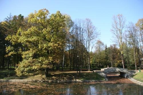 City lake