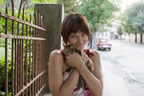 There's a lot of cats in Chernivtsi.