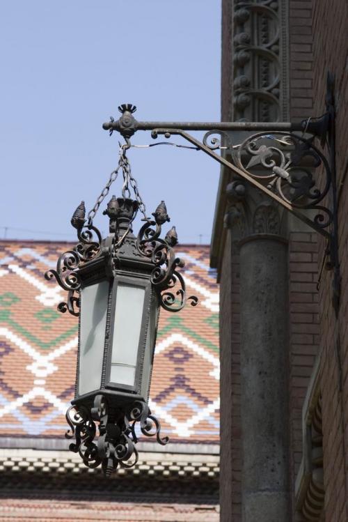 Lights at the University