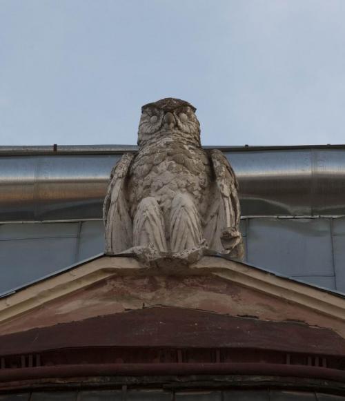 House with an owl on the Horkoho Street