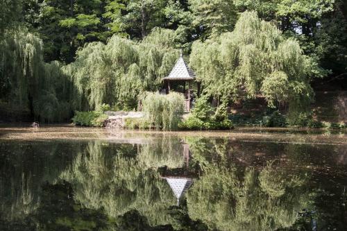 Krasnokutsk Arboretum