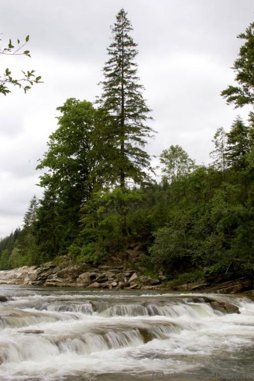 Река Мизунка