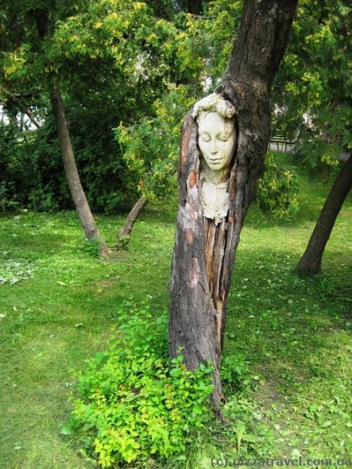 Лицо на дереве в сквере Гончара