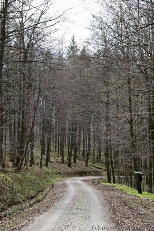 Экотропа в парке Natur Live в горах Харц