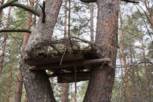 Искусственное гнездо для птиц