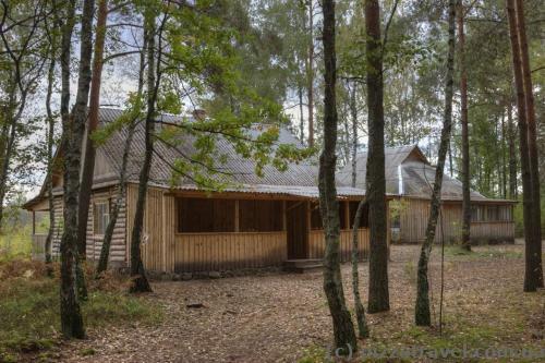 Домики в лесу, где мы ночевали.