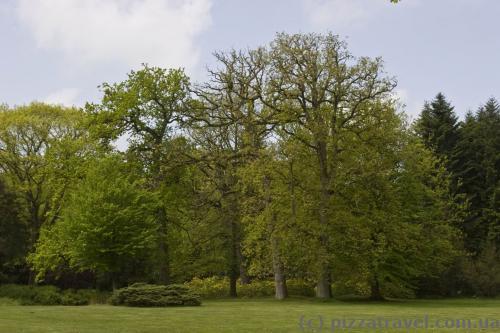 Парк у Лютетсбурзі