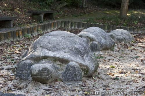 Funny turtles in the park of Goslar