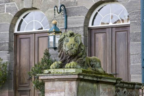 Лев около дворца Вильгельмсхёэ