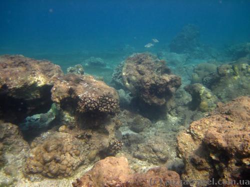Красное море около Акабы