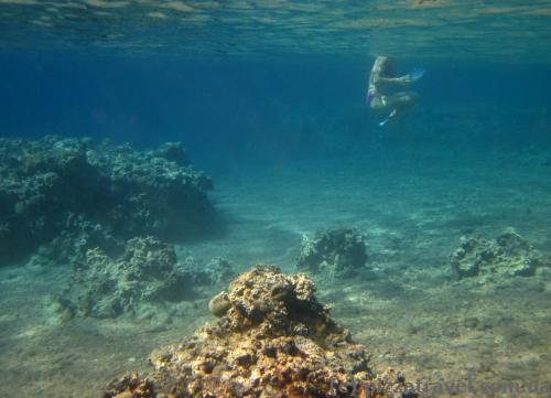 Red Sea near Aqaba