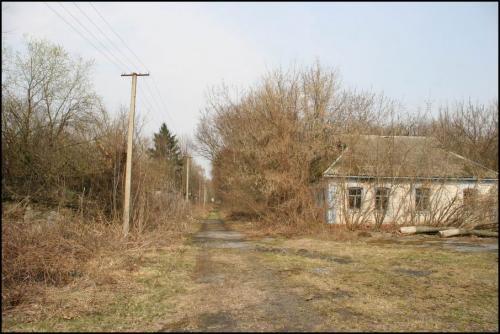 Одно из сел в Чернобыльской зоне