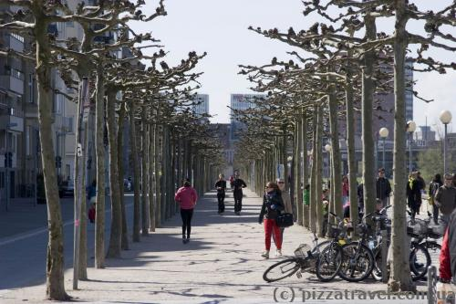 On the waterfront in Duesseldorf